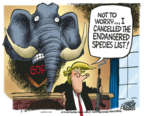 Mike Peters  Mike Peters' Editorial Cartoons 2018-08-10 presidential